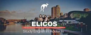 study-elicos